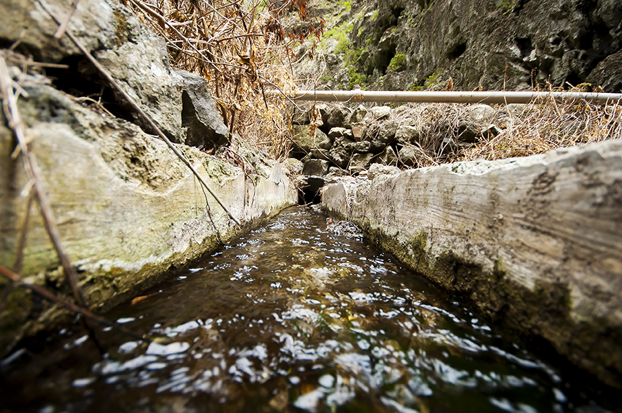 heredamiento-aguas-canarias